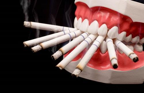 Sự nguy hiểm của thuốc lá tới sức khỏe con người?