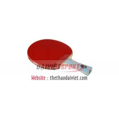 Vợt bóng bàn mút DHS 6002