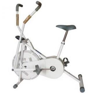 Xe đạp tập ĐL-115W
