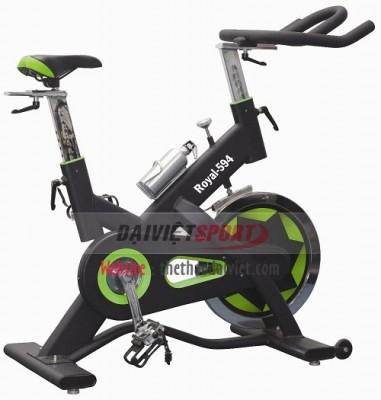 Xe đạp tập leo dốc Royal-594