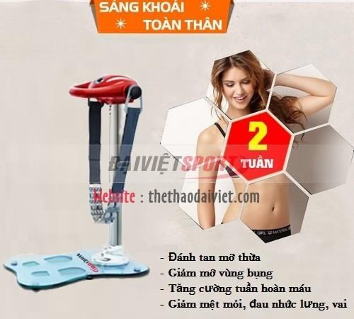Máy rung đứng Đại Việt DV-839