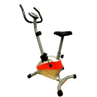 Xe đạp tập thể thao Royal 561C