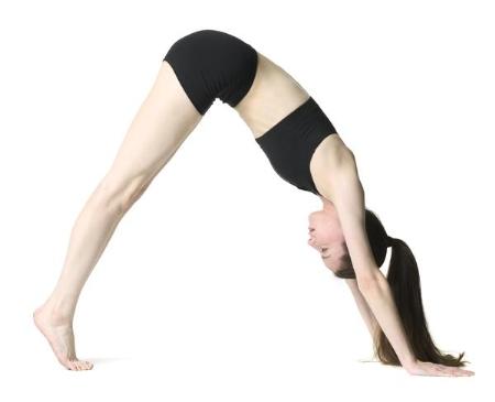 7 đông tác tập yoga vào buổi sáng1