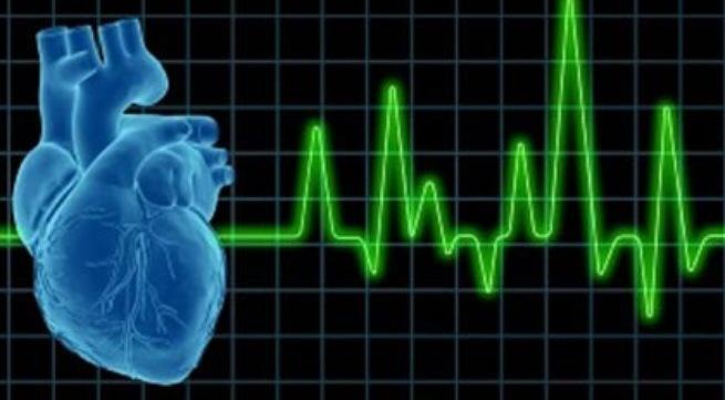 cách giảm mỡ hiệu quả với cardio trên máy chạy bộ-3