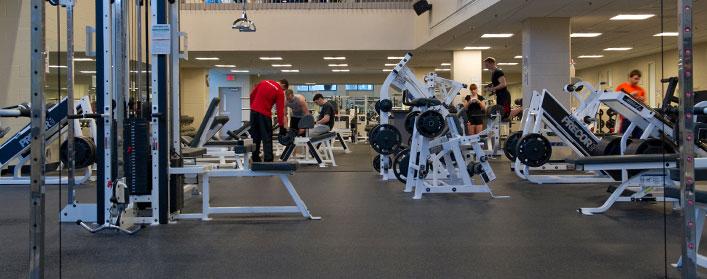 Kết quả hình ảnh cho thiết bị phòng tập gym