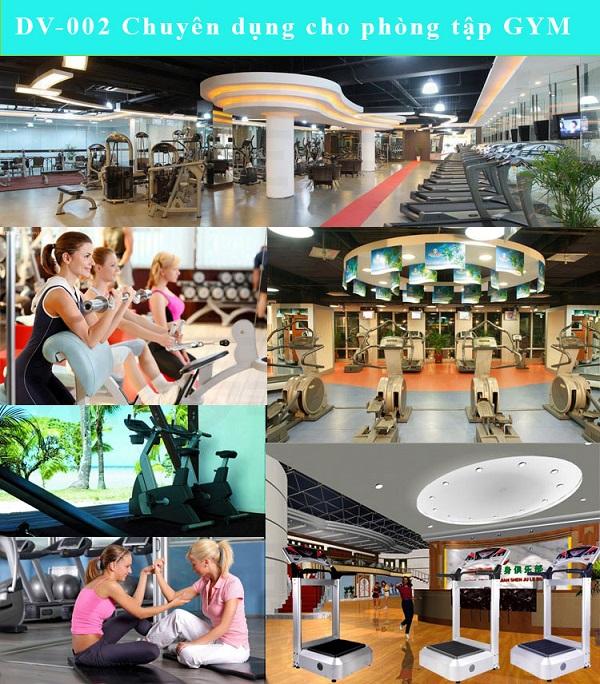 DV-002 chuyên dụng phòng tập gym