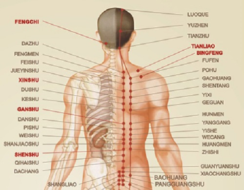 Ghế Massage Toàn Thân Tokuyo TC-366 - 2017