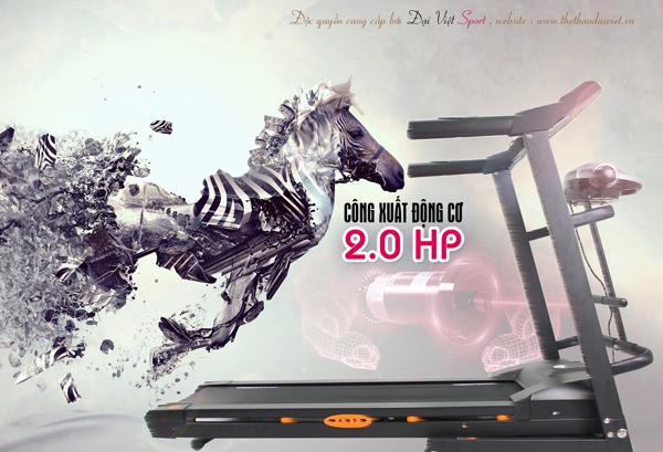 máy tập thể dục giá rẻ