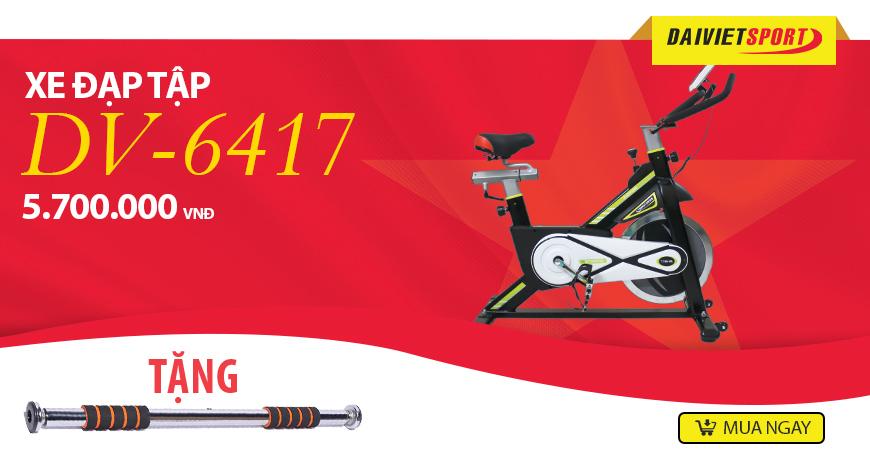 Xe đạp tập Đại Việt DV-6417
