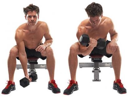 Các bài tập cơ tay cơ chân cho gymer